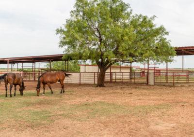 Fort Worth Real Estate Broker